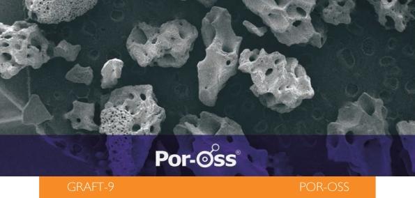DM_POROSS-1