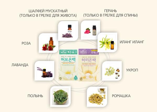 7 видов полезных для женщин лечебных трав!